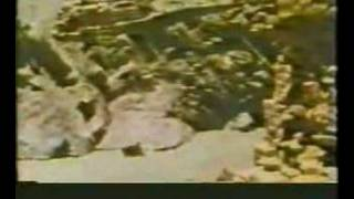 Historical Hunza Video 1 at www.gojal.net