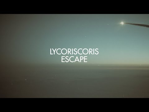 Lycoriscoris - Escape