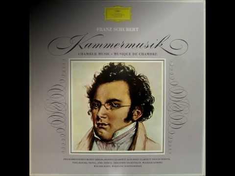 Schubert: Chamber Music (DG 8 LP Box Set) - LP 8 - Piano sonatas D. 845 & D. 894
