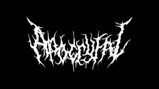 Apocryfal - The Script
