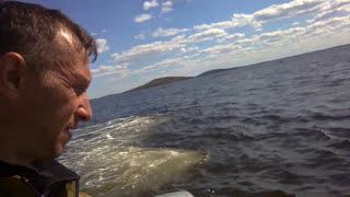 Как накопать в море Морского Червя на Рыбалку!Якорь ему в спину!
