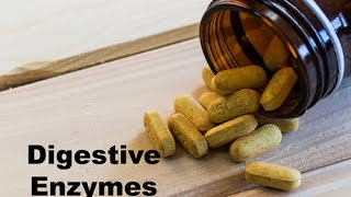 Enzymes: The Spark Plugs of Life