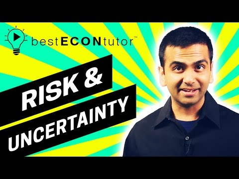 BEST Econ Tutor - Risk Aversion, Asymmetric Info, and Present Value (Ch 20)