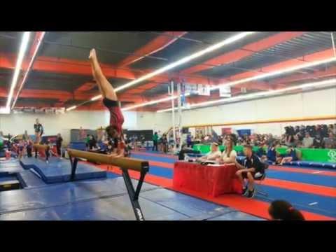 xcel gymnastics state meet sc