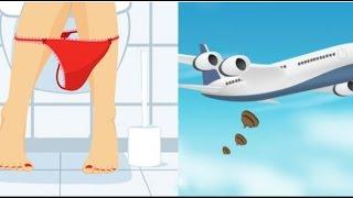 Куда деваются какашки в самолетах?