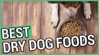 Best Dry Dog Food | 5 Best Dry Dog Foods in 2020 🐶 ✅