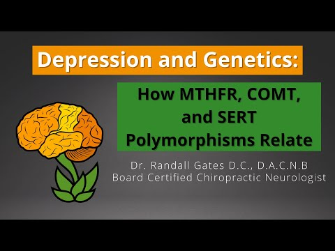 Depression And Genetics: How MTHFR, COMT, And SERT Polymorphisms Relate.