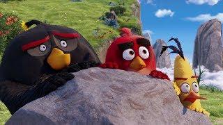 """Могучий орел уже не тот - """"Angry Birds"""" отрывок из фильма"""