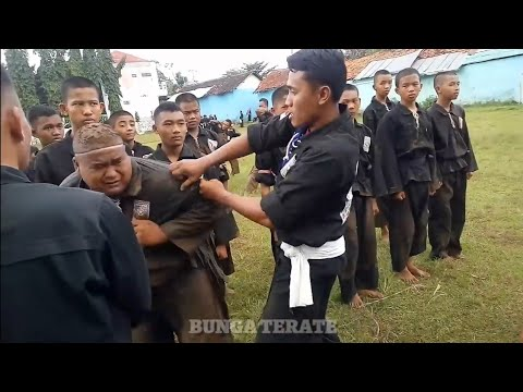 Laporn Tes Sabuk Hitam Ke Jambon PSHT.. Ranting Kerjo, Karanganyar