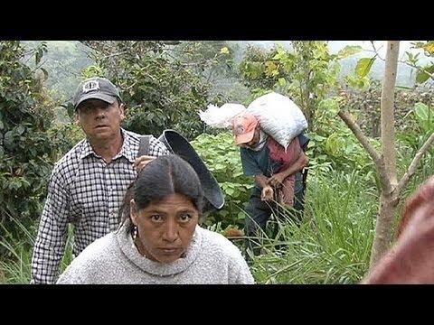 FARC ve hükümet toprak reformunda anlaştı