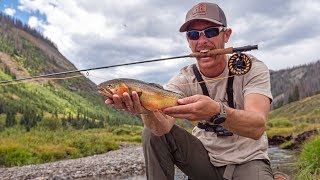 Fly Fishing Remote Mountain Stream for Mystery Trout