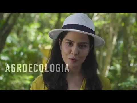 Atriz Letícia Sabatella convoca para a Marcha das Margaridas 2019