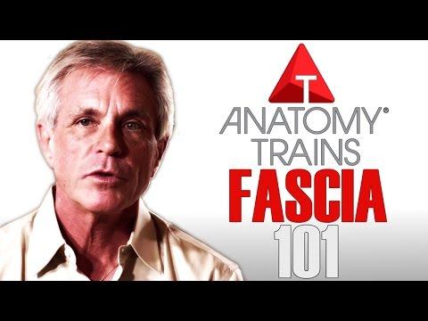 Thomas Myers - Fascia 101