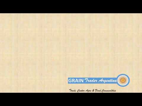 GRAIN Trader Argentina 🇦🇷 Presentation 2017