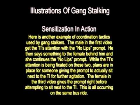 the differences between paparazzi and stalkers An introduction to issues of gender in  introduction to issues of gender in stalking research amy e lyndon & h  relationship between stalkers and.