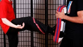 How to Do a Front Thrust Kick | Wing Chun