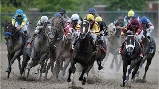 2009 Preakness Stakes