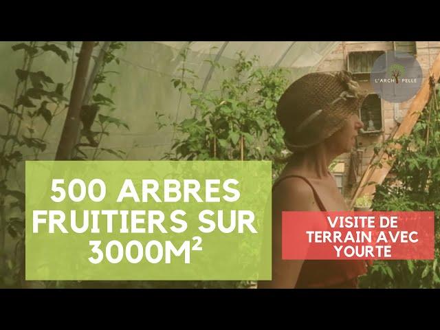 #105 Plus de 500 arbres fruitiers sur un terrain de 3000m² avec yourte