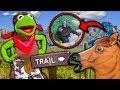 Kermit the Frog's Cowboy Nature Tour! (We found Bigfoot)