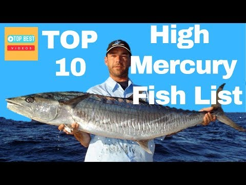 Top 10 High Mercury Fish List