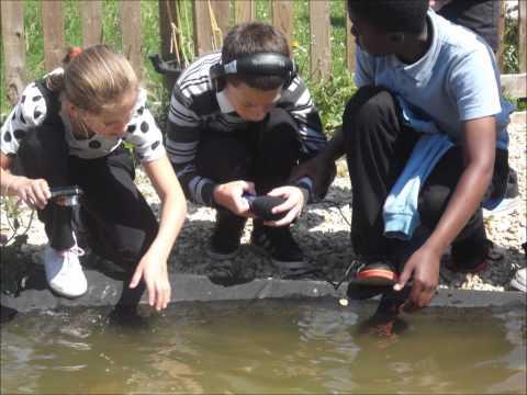 Greenway Primary School Soundwalk 2