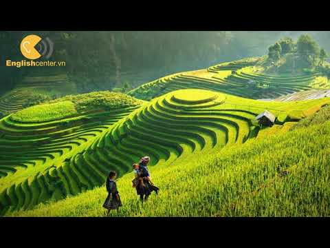 Englishcenter.vn - L2 - Farms - Crops