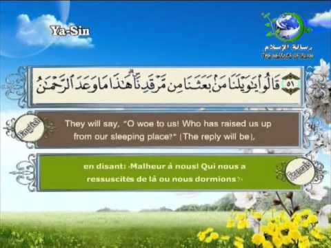 Surat Yaseen-Sheikh Saad Al Ghamdi