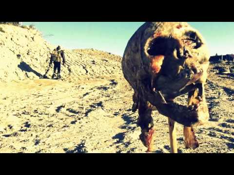 The Wastelander - Apocalyptic Short Film