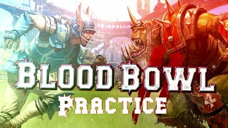 Sep 25, 2015: Blood Bowl 2 practice