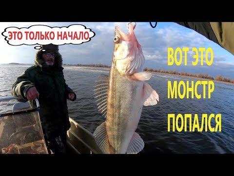 Ловим трофейных СУДУКОВ на джиг в Астрахани