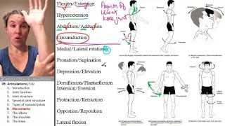vuclip Articulations 6- Anatomical movements