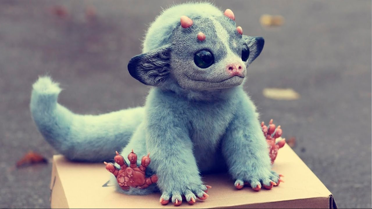 Топ 5 Самые необычные существа на планете - Невероятные факты - странные животные  мира - YouTube 91c31c08b5eae