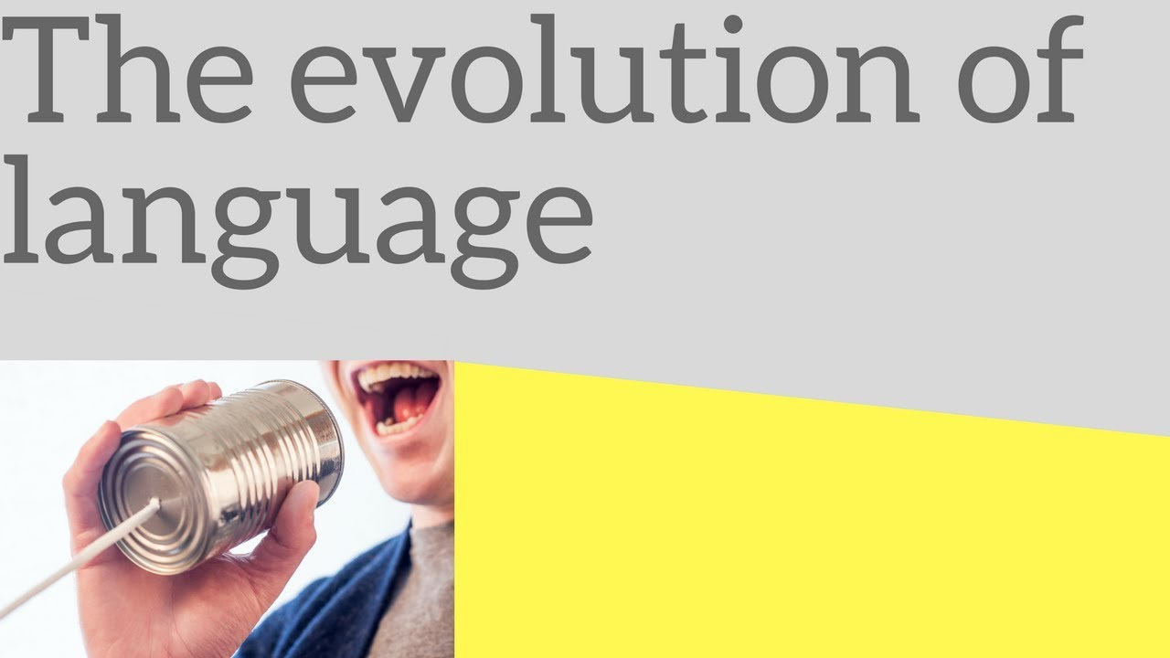 the evolution of language Attempts to shed light on the evolution of human language have come from many areas including studies of primate social behavior (4-6), the diversity of existing human languages (7, 8), the development of language in children (9-11), and the genetic and anatomical correlates of language competence (12-16), as well as theoretical studies of cultural evolution (17-21) and of learning and lexicon formation.