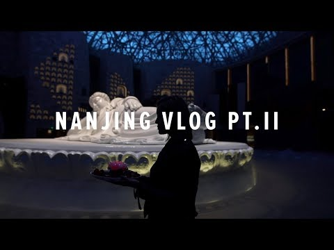 Nanjing China Travel Vlog Pt. II