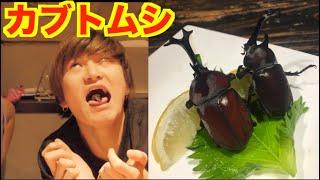 【閲覧注意】業界初!「食用のカブトムシ」を喰らい尽くす!