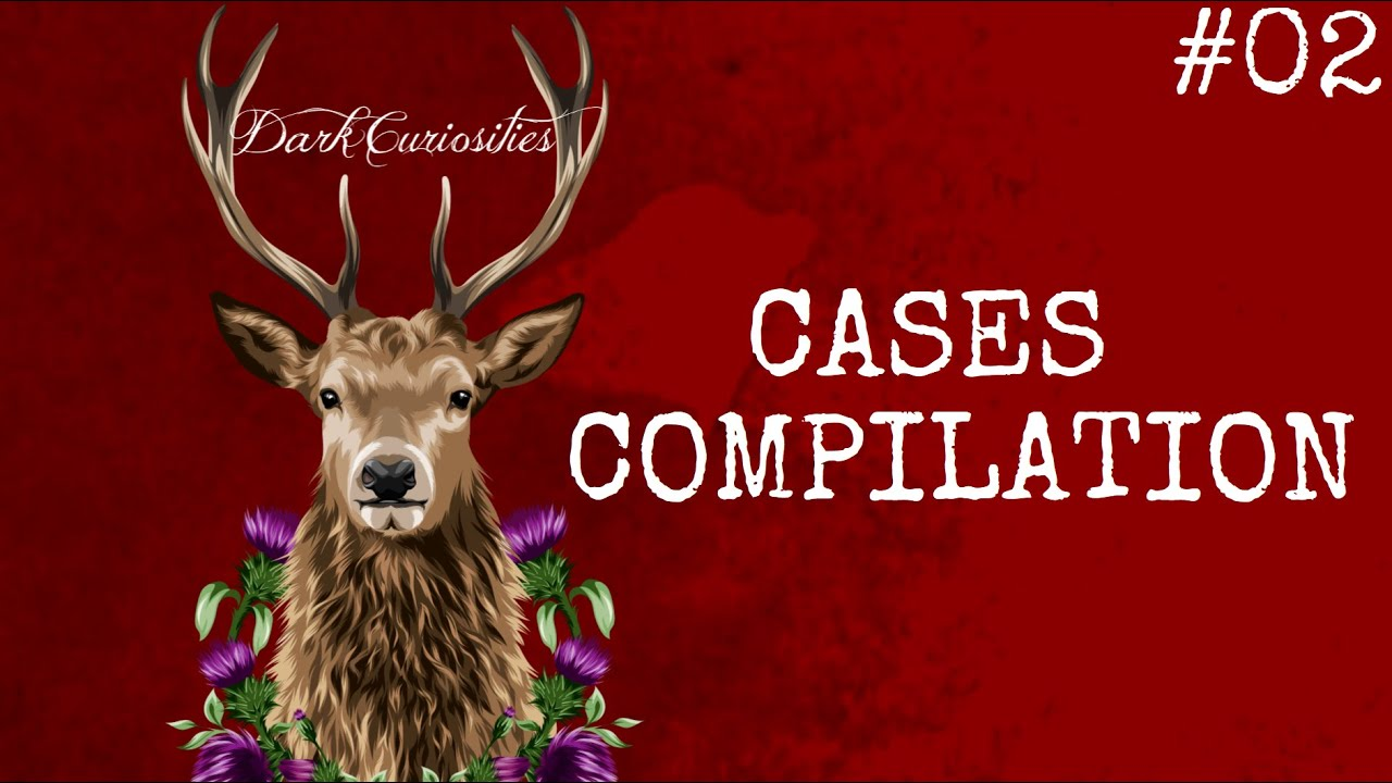 Cases Compilation #02