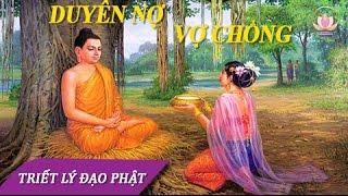 NHÂN DUYÊN VỢ CHỒNG: Có Duyên Thì Sẽ Gặp Vô Duyên Ắt Tự Đi - Lời Phật Dạy Hay Nhất