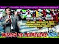 MUZICA DE PETRECERE  - Colaj Muzica de Petrecere de 32 minute