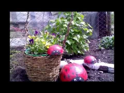 видео: Идеи - красивые клумбы своими руками из корзин. Забавные красивые клумбы на даче из корзин