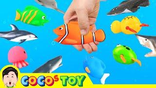 Catching animals in streamsㅣreal version, sea animals cartoon for kidsㅣCoCosToy