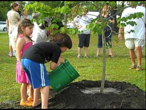 Earth Day - Arbor Day at Apalachicola Community Garden 5 of 5.mov