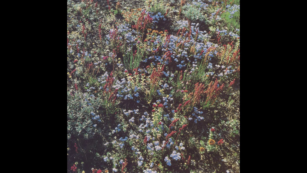 Motorama — Before The Road (Full Album)