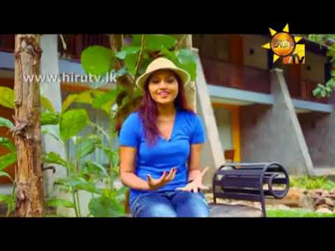 ▶ Grand Udawalawe Safari Resort - Travel & Living EP 32