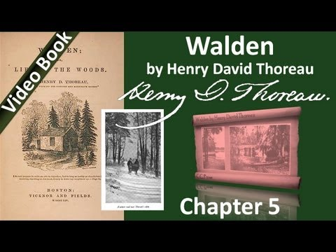 Chapter 05 - Walden by Henry David Thoreau - Solitude