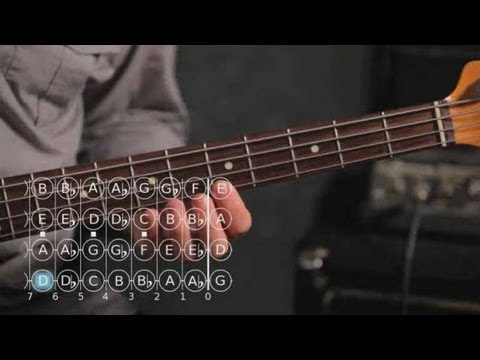 How To Play A D Minor Scale Bass Guitar Youtube