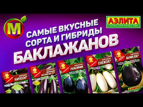 Самые Вкусные Сорта и Гибриды Баклажанов 2019