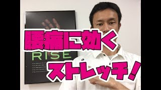 接骨院RISEの先生に直接相談してみる!☆無料相談受付中☆ 【LINE@から2...
