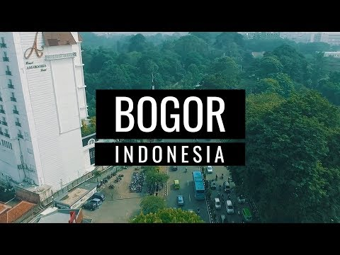 Bogor, Indonesia (Taman Safari & Puncak) | Cinematic Travel Video