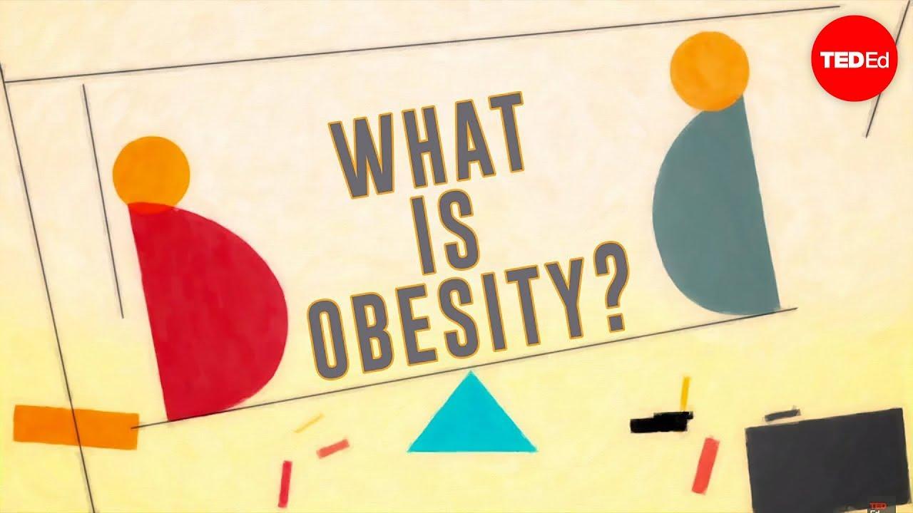 What is obesity  Mia Nacamulli  YouTube