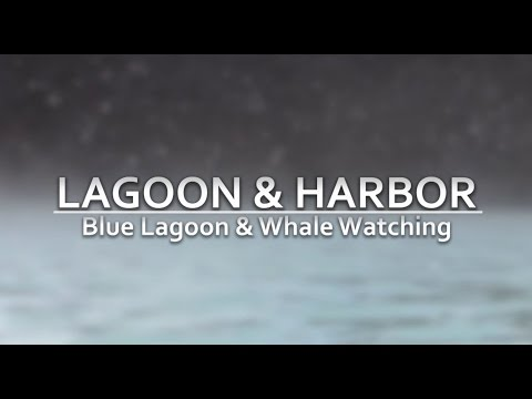Blue Lagoon & Whale Watching - ICELAND Narrated Vacation Documentary - PART 3
